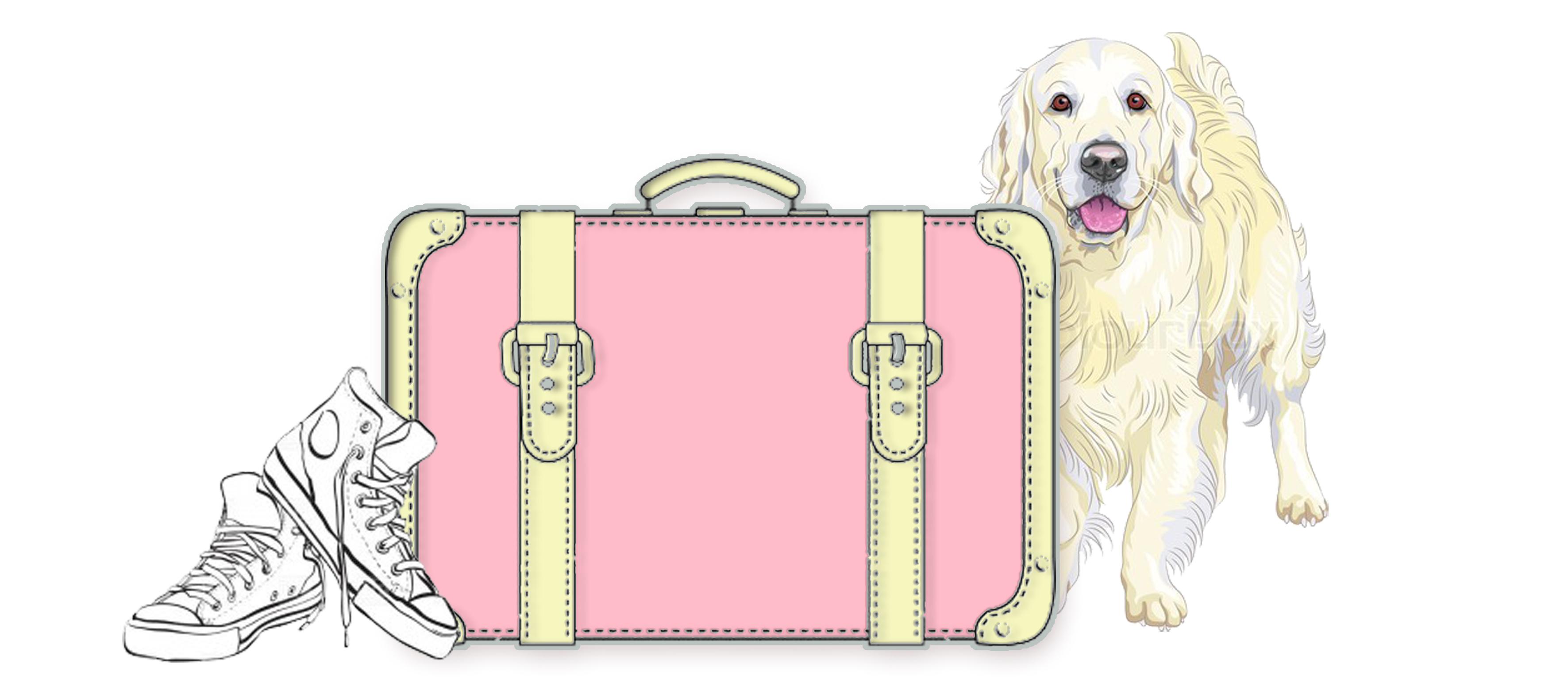 My Traveling dog