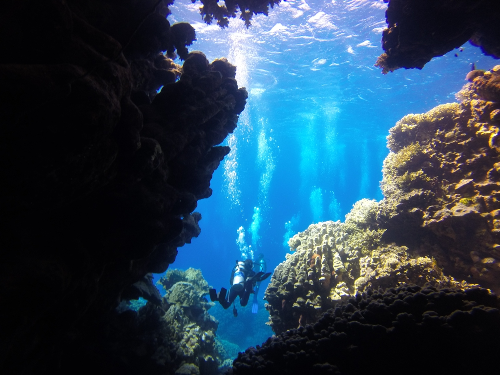 Top Dive Sites in Marsa Alam, Egypt
