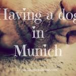 Having a dog in Munich