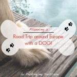 Planning a road trip around Europe with a dog. By Packing my Suitcase.