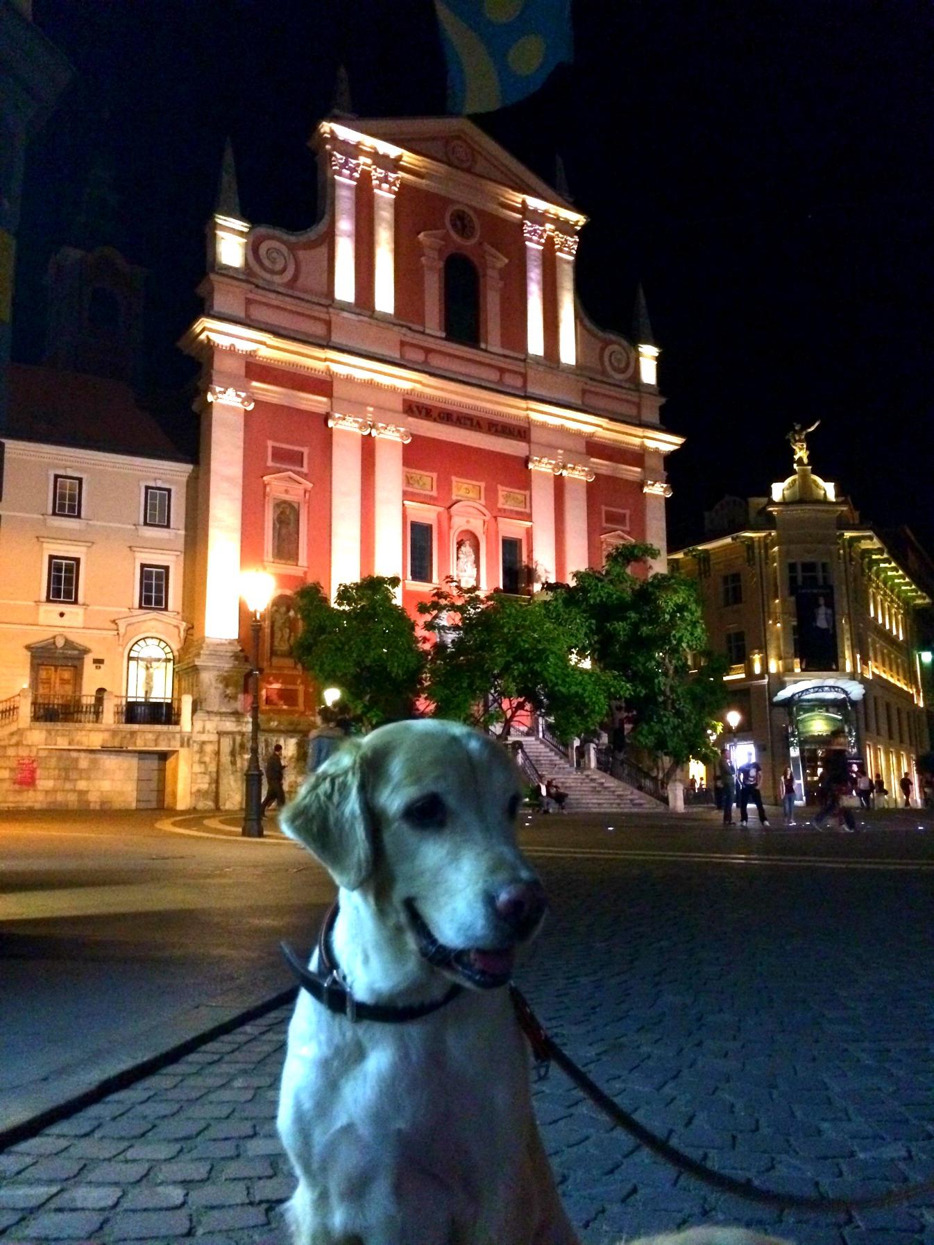 Wandering around Ljubljana!