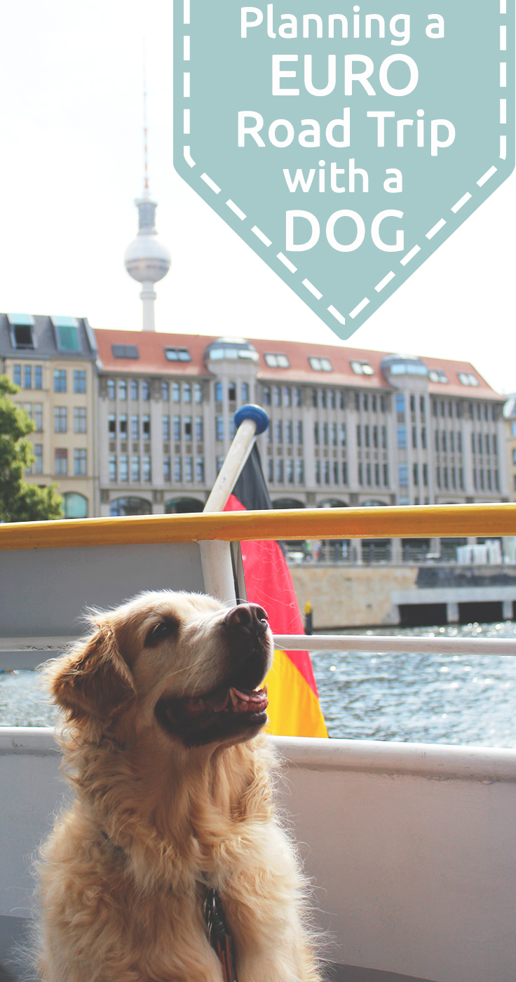Planning a road trip around Europe with a dog