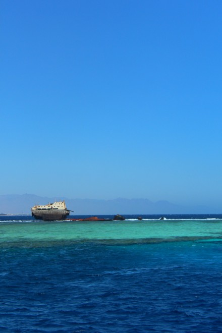 Diving in Sharm-El-Sheikh, Egypt. By Packing my Suitcase.
