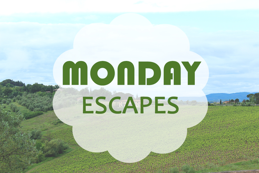 Monday Escapes #7