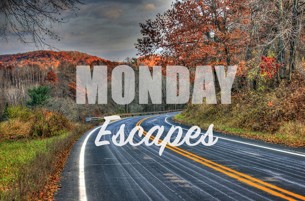 Monday Escapes #15