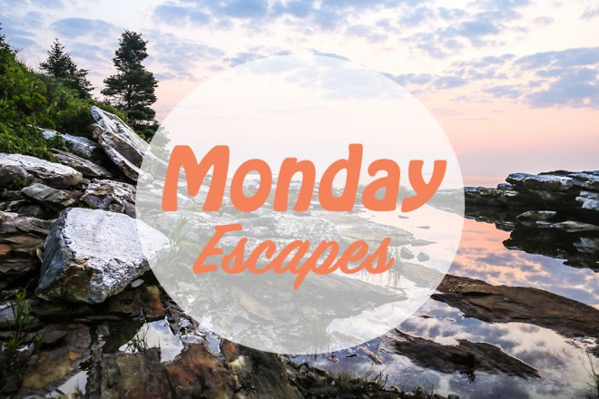 Monday Escapes #12