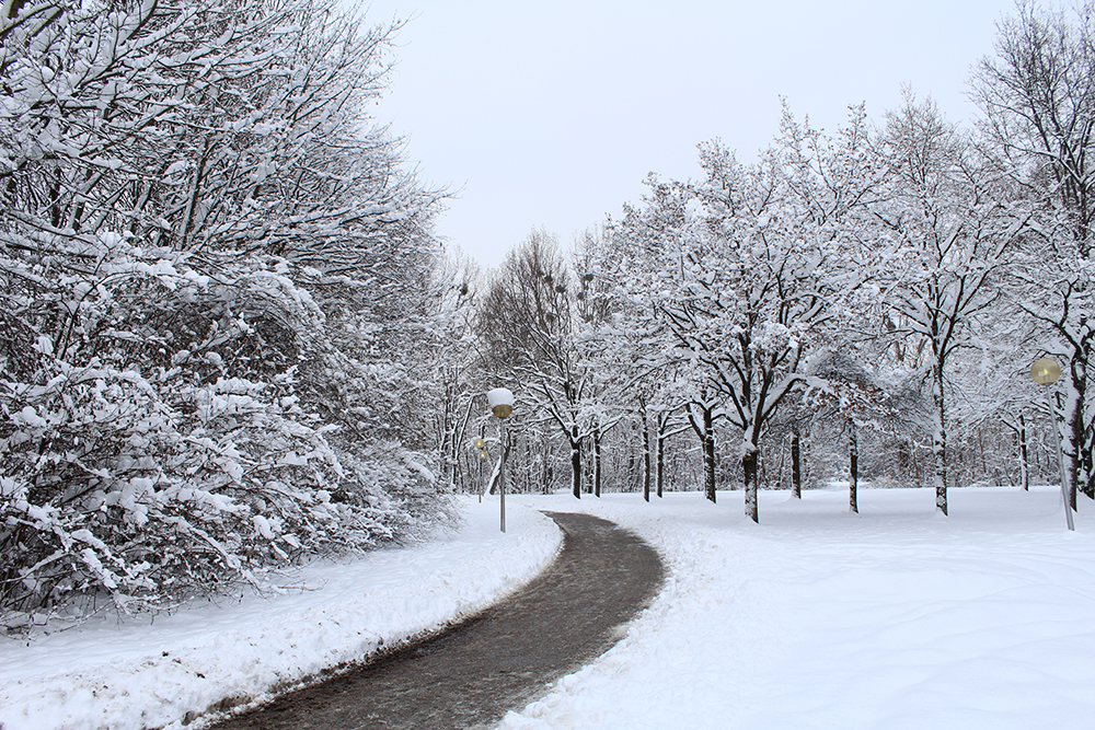 Snow in Munich