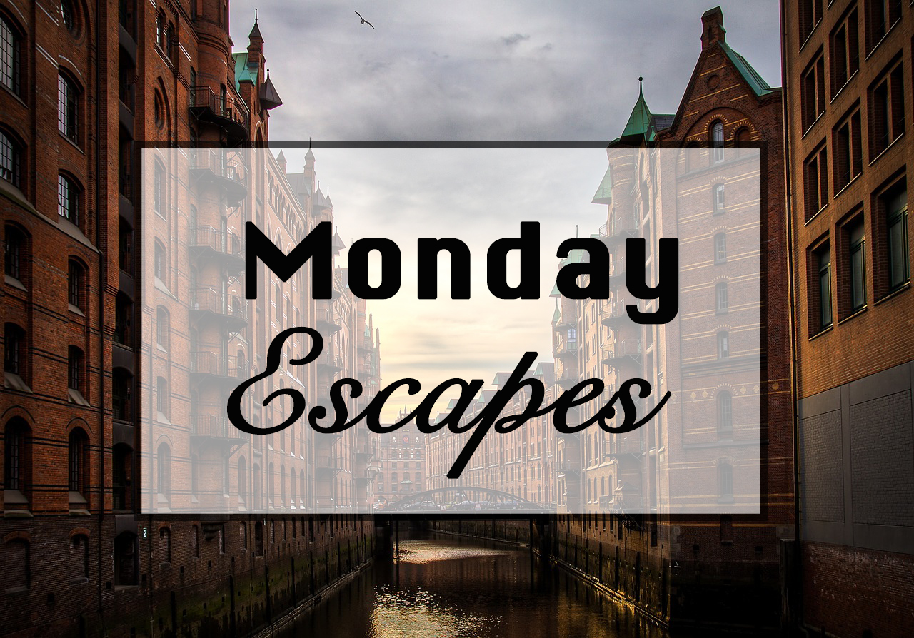 Monday Escapes #21