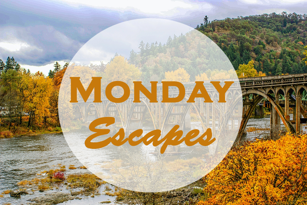 Monday Escapes #23