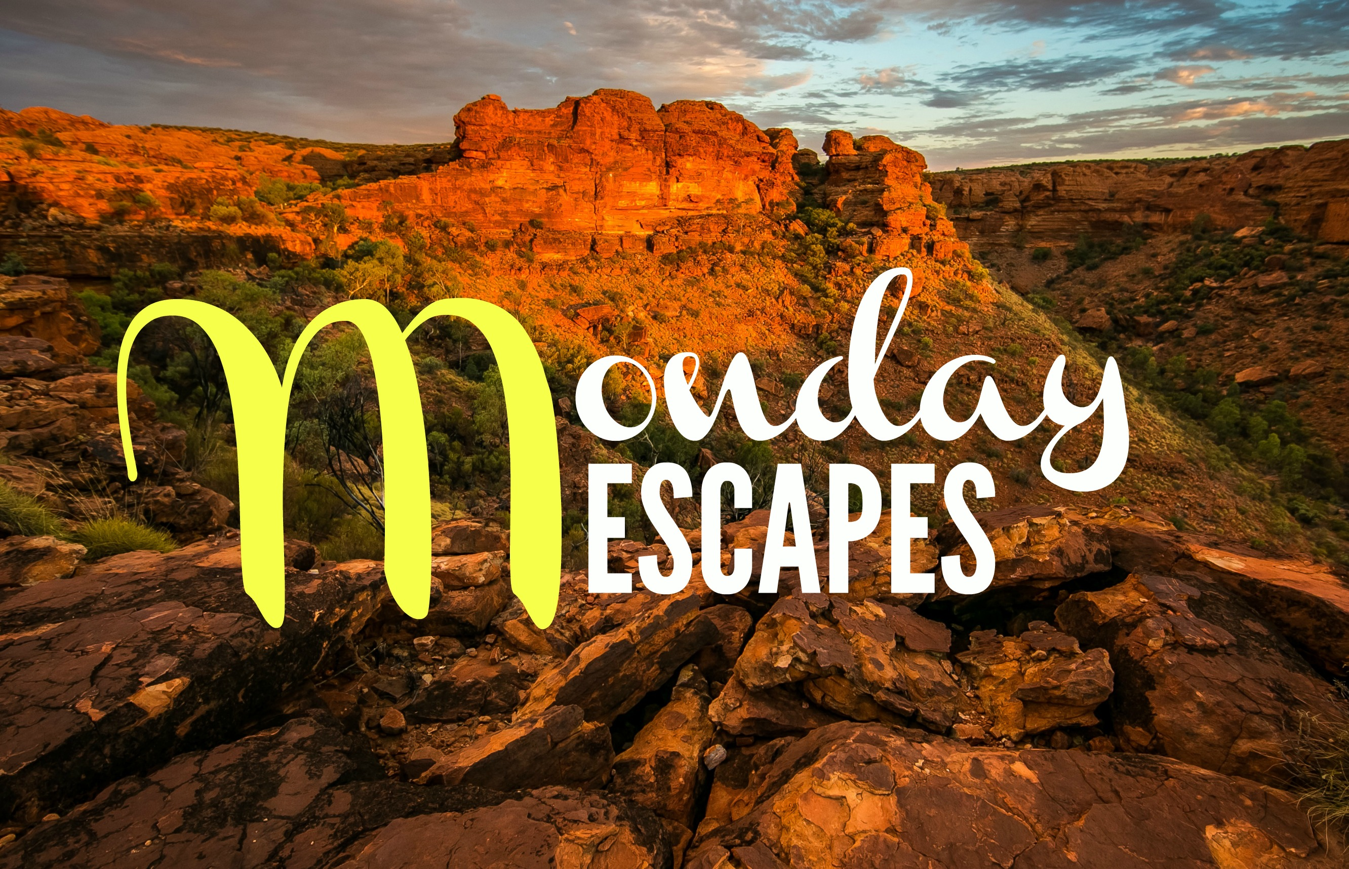 Monday Escapes #29