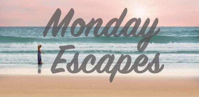 Monday Escapes #37