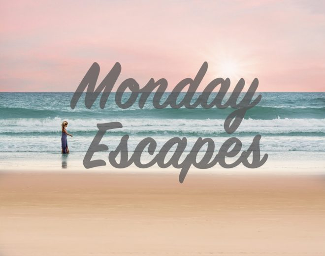 Monday Escapes #37