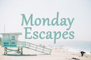 Monday Escapes #39