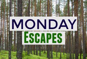 Monday Escapes #42