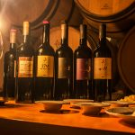Wine tasting on Hvar Island
