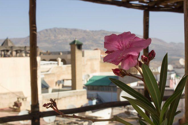 Riad Anata, Fez