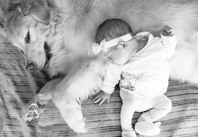 Baby girl and dog