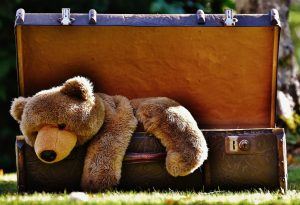 Luggage teddy bear