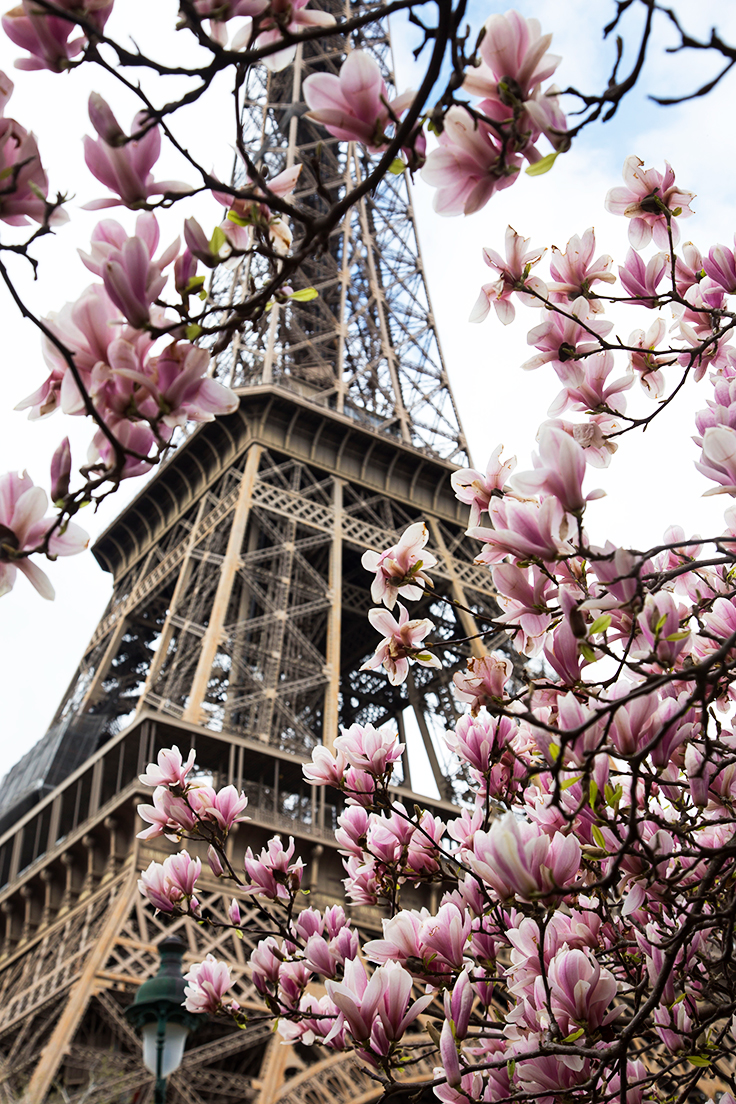 10 Must do's in Paris