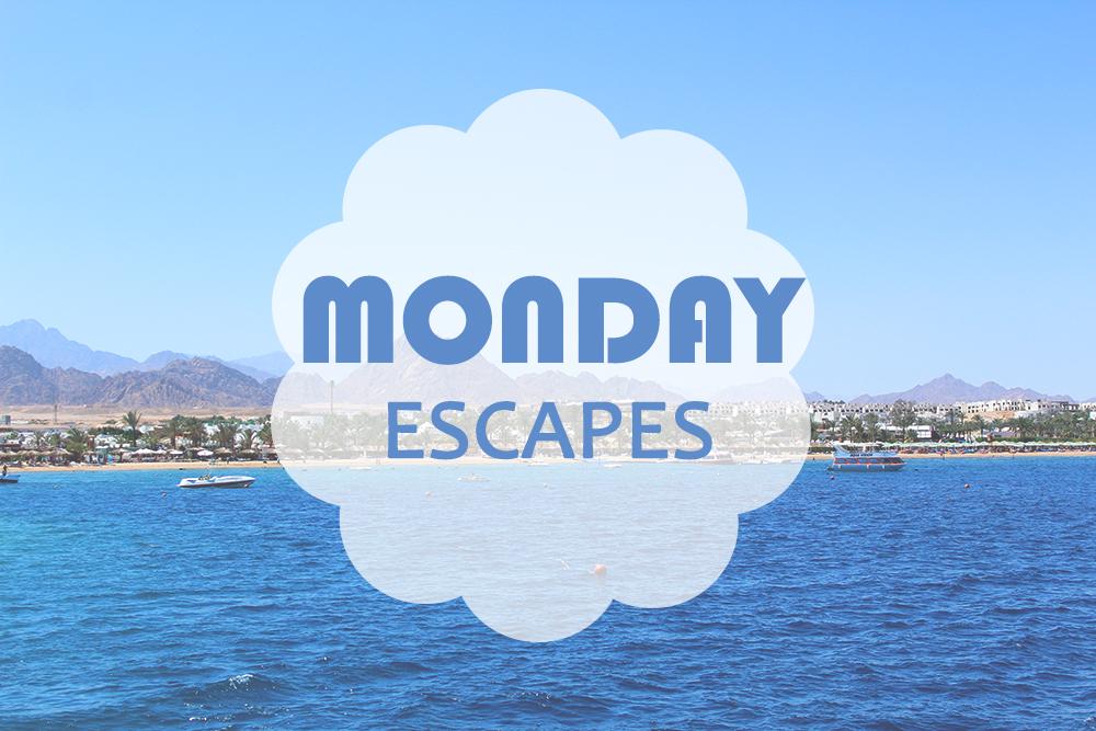 Monday Escapes #6
