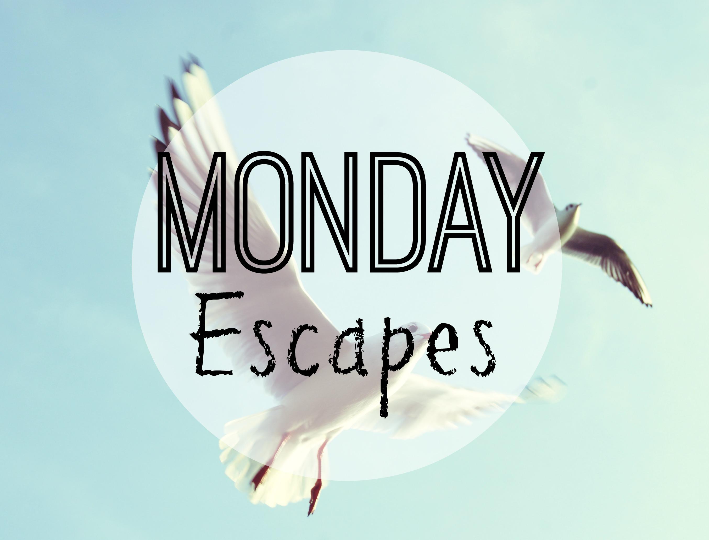 Monday Escapes #8