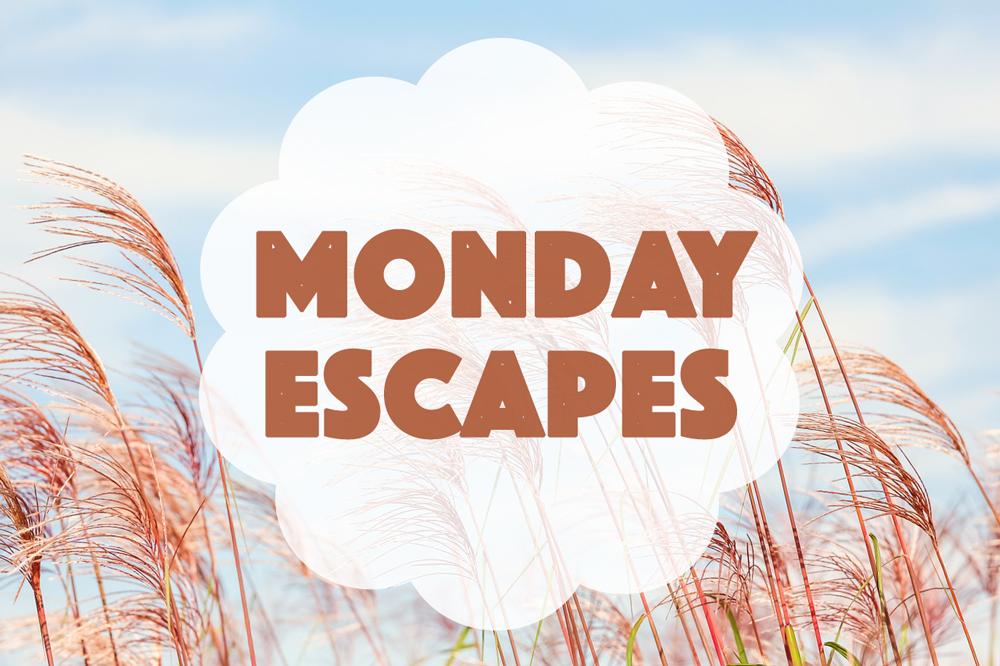 Monday Escapes #40